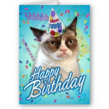 grumpy cat birthday google search grumpy birthday wishes