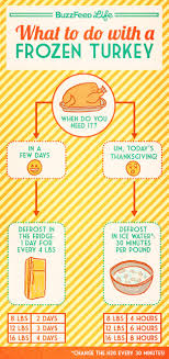 thanksgiving dinner infographics that will seriously help