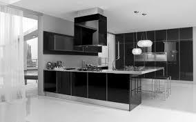 25 best monochrome kitchen ideas 1696 baytownkitchen