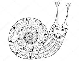 vector zentangle snail for coloring pages art therapy e