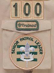 Arrow Of Light Patch Boy Scout Uniform