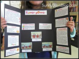 Projects To Do At Home by Science Projects For 3rd Graders To Do At Home Home And Home Ideas