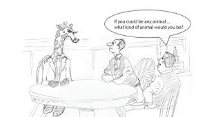 if you could be any animal a guide to answering interview trick questions amos tayts