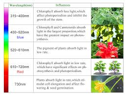 light and plant growth led grow lights reviews seming lighting