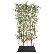 laura ashley 96 in tall burgundy bamboo screen in pot kd