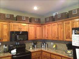 Kitchen Cabinets In Los Angeles 100 los angeles kitchen cabinets kitchen cabinet doors in