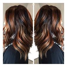 ecaille hair new hair trend ecaille tortoise shell hair color technique