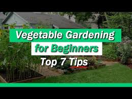 vegetable gardening for beginners 7 tips you must know youtube