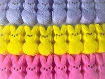 easter marshmallow candy peeps stock photos 1 760 images