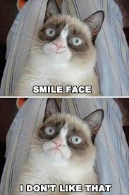 19 Awesome Grumpy Cat Christmas - best of grumpy cat gallery ebaum s world