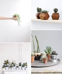 simple home decor plant decor modern on cool amazing simple and