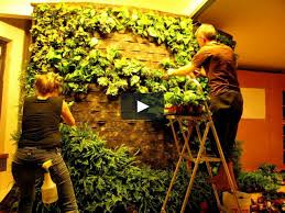 Vertical Garden Walls by Diy How To Making Of Patrick Blanc Style Green Wall Vertical
