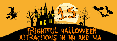 halloween laboratory props 15 frightful halloween attractions quirk cars
