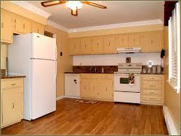 Build Kitchen Cabinets Diy Diy Plywood Kitchen Cabinets Images U2013 Home Furniture Ideas