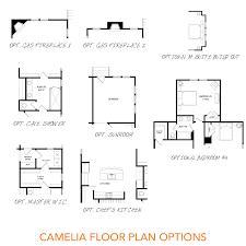 the camelia sabal homes