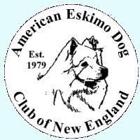 american eskimo dog breeders new england american eskimo dog breeder wachusett american eskimos