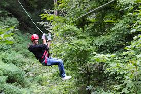 Treetop Canopy Tours by Zip Lining And Canopy Tour At Long Point Eco Adventures Youtube