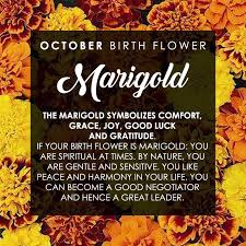 Birth Flowers By Month - my sister tattoo ideas pinterest month flowers birth