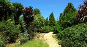 Botanical Garden Internship Cus Internships