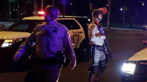 las vegas shooting killer bought more than 30 weapons source