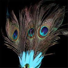peacock masquerade masks peacock mask ebay