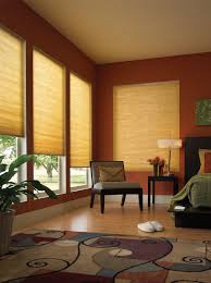 Bedroom Decorating Ideas With Wood Floors Decorating Natural Brown Levolor Vertical Blinds Plus Grey Sofa