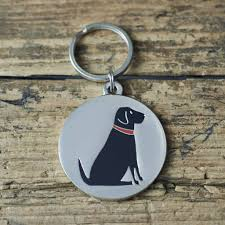 Home Design Story Dog Bone by Name And I D Tags For Pets Notonthehighstreet Com