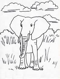 african elephant coloring page samantha bell