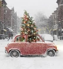 christmas tree delivery christmas tree delivery fishwolfeboro