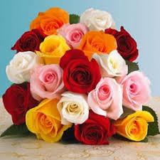 Rose Flower Images Rose Flower In Ahmedabad Gujarat Manufacturers U0026 Suppliers Of