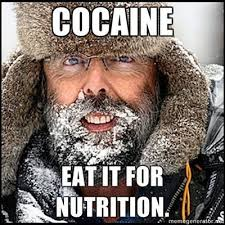 Coke Bear Meme - image 90725 cocaine bear know your meme