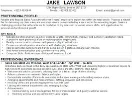 Resume Profile Examples For Customer Service Can You Put Two Addresses On A Resume Sample Of A Good