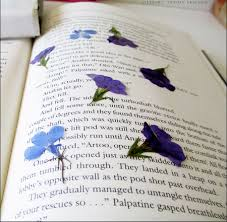 Flowers In A Book - dried and pressed flower crafts literary spring designs