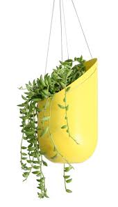 Modern Hanging Planters by Outdoor Hanging Planter Green Thumb Pinterest Planters