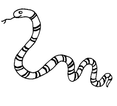 snake coloring pages print clipart panda free clipart images
