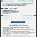 The Best Resume Writing Service by Resume Template 93 Amusing The Best Format Healthcare U201a In World