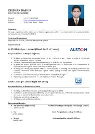 Resumes For It Jobs by Zeeshan Bashir Cv