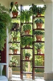 Best Plants For Vertical Garden - best plants to keep in your bedroom to help you sleep