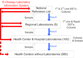 a web based laboratory information system to improve quality of