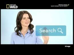 trivago commercial actress trivago advertisement girl gabrielle k miller australia youtube