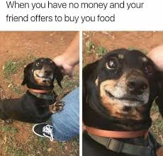 Buy All The Food Meme - dopl3r com memes when you have no money and your friend offers