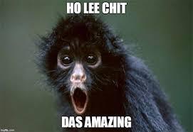Holy Crap Meme - holy crap monkey memes imgflip
