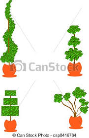 Topiary Planters - eps vector of topiary planters four topiary styled evergreen