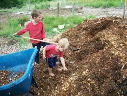7 reasons to homestead why self sufficiency is the best safety