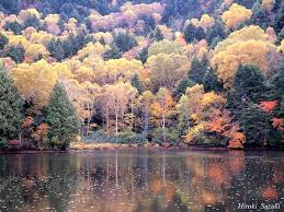 autumn scene wallpapers images and nature wallpaper autumn scene