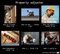Claims Adjuster Meme - cat adjister memes google search it s a cat thing