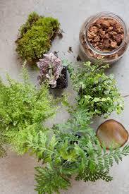 urban gardening best city gardens in chicago 2013