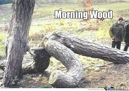 Morning Wood Meme - morning wood by koza meme center