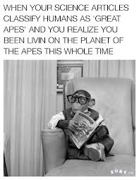 Planet Of The Apes Meme - in response to the new planet of the apes trailer memes