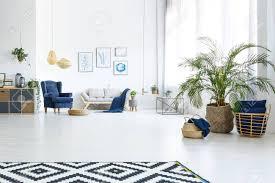 salon canapé fauteuil salon blanc avec canapé fauteuil bleu et plante décorative banque d